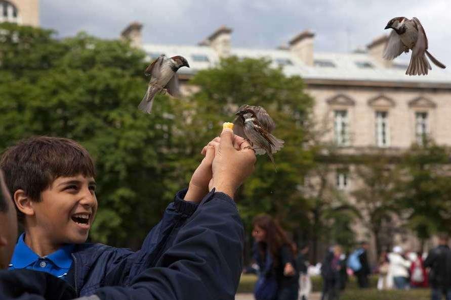 Kinderfotografie Paris