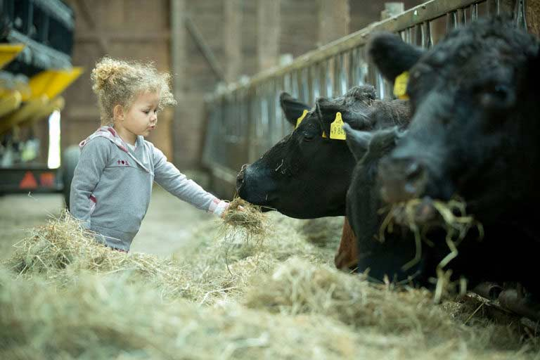 Kinderfotografie Mueritz – Urlaub auf dem Bauernhof